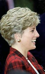 Best Princess Diana Hairstyles Ideas And Images On Bing Find
