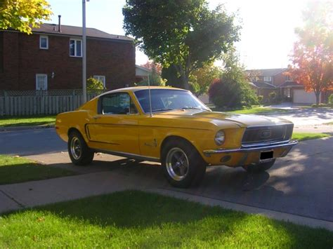 mustang fastback muscle car amazing classic cars