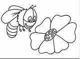 Bee Coloring Queen Printable Bumble Pages Getcolorings Print Colorings Sheet sketch template