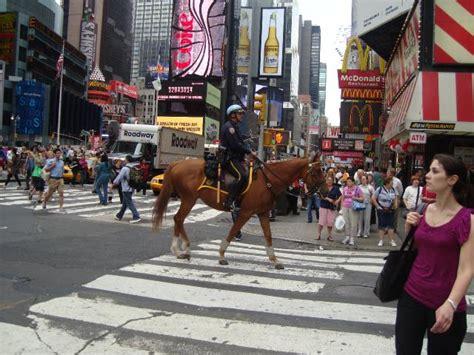 une police  cheval  time square  york  de