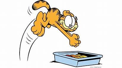 Garfield Lasagna Eating Cat Lasagne Pasta Pressing