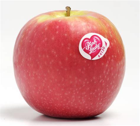 Apple. - QBN
