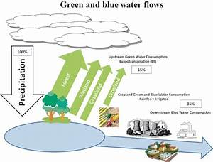 Green And Blue Water Flows Adapted From Falkenmark  2009