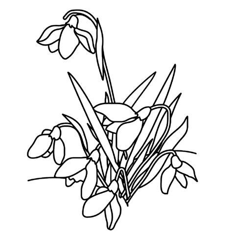 Kleurplaat De Natuur by Leuk Voor Bloemen Sneeuwklokjes