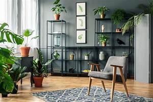 Best, Plant, Stands, U2013, Ode, Magazine