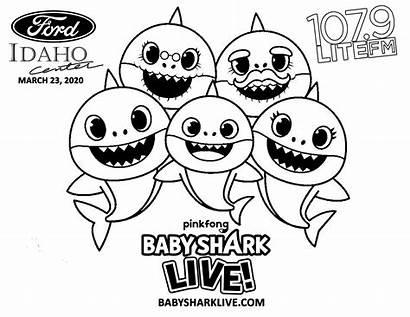 Shark Coloring Sheets Printable Pinkfong Idaho Ford