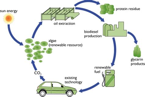 Biofuel Engine Diagram by Transport And Sustainability Potential Openlearn Open