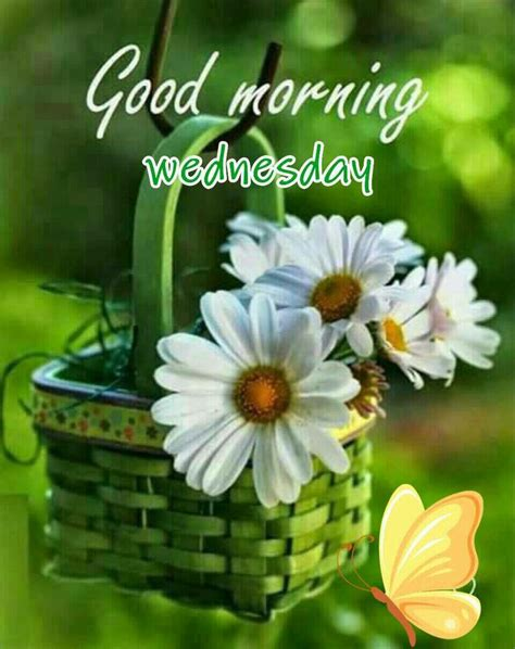 Images Of Happy Wednesday 17 Best Images About Happy Wednesday Quotes On
