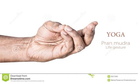 Yoga Pran Mudra Stock Image Image Of Pose, Awareness. Identify Signs. Four Line Signs. Office Building Signs Of Stroke. Street Furniture Signs Of Stroke. Patho Signs. Physical Examination Signs Of Stroke. Concussion Signs. Coke Signs Of Stroke