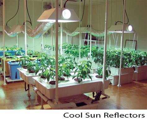 30 best images about tomato grow lights on