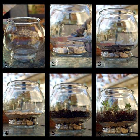 comment transformer un aquarium en terrarium homesus net