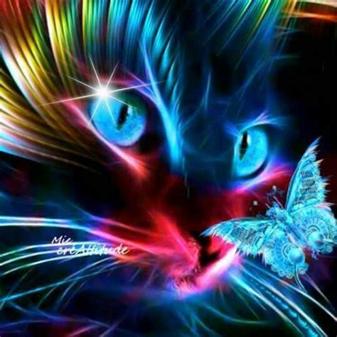 images  neon animals  pinterest cats