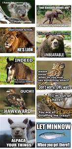 All the animal puns! - Funny Pictures - Funny Photos ...