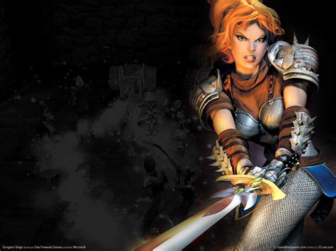 dungeon siege hd dungeon siege wallpaper and background 1600x1200 id 342097