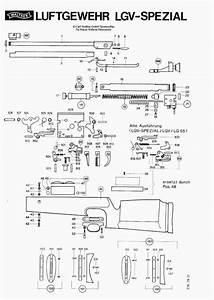 Walther Modell 55 : walther lgv ersatzteile exportfeder druckfeder kolbenfeder knicklaufluftgewehr kaliber 4 5mm 5 ~ Eleganceandgraceweddings.com Haus und Dekorationen