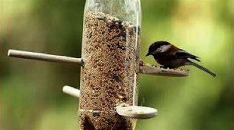 idee cuisine en u comment créer facilement un distributeur automatique de nourriture pour oiseaux