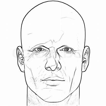 Human Drawing Medical Outline Face Male Head
