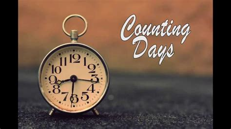 counting days feat evie plumb pompeii bastille cover