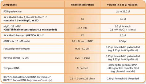 Pcr Template Amount by Pcr Template Amount Gallery Template Design Ideas