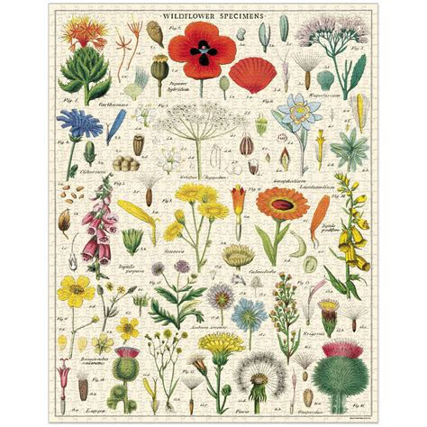 Cavallini Puzzle - Wildflowers