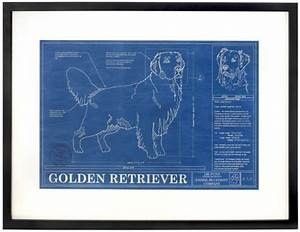 42 best blueprint images on pinterest billboard With kitchen cabinets lowes with golden retriever wall art
