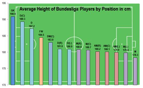 Body Data Of Bundesliga Players By Position  Den Dingen