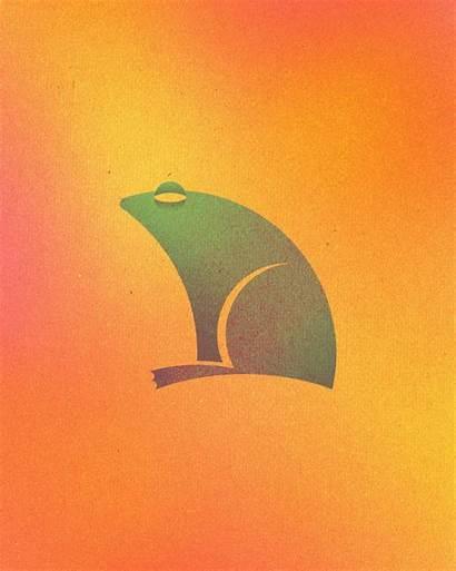 Circles Animal Logos Perfect Colorful Frog Dorota