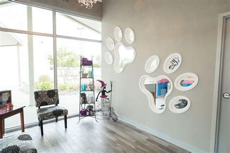 resultado de imagen  dog grooming salon decorating