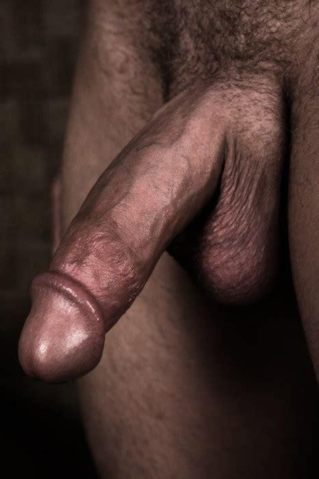 Men  and their beautiful cocks   Nude Cumshot Pics   Redtube
