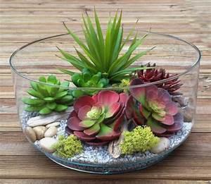 les 25 meilleures idees de la categorie plante d39interieur With chambre bébé design avec plantes grasses d intérieur fleuries