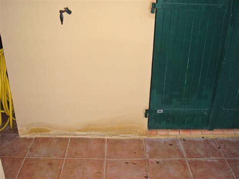 probleme humidité chambre problème humidité des murs extérieurs remontées d 39 humidité