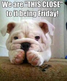 bank holiday weekend quotes images weekend
