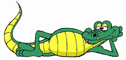 Krokodile Clipart Alligator Archiv Gifs