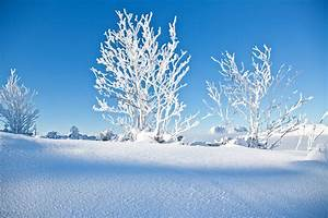 A winter holiday in PillerseeTal