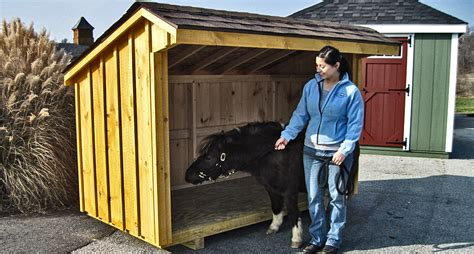 Barns For Miniature Horses