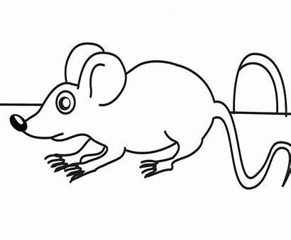 Mouse Coloring Danger Pages Dessin Coloriage Souris