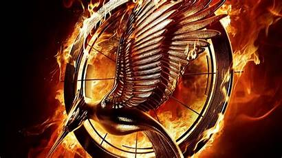 Hunger Games Mockingjay Background Wallpapers Wallpapersafari