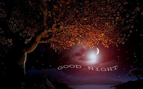 Free Good Night Wallpapers Wallpapersafari