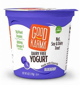 Blueberry Dairy Free Yogurt - Good Karma Foods