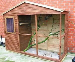 Fabrication D Une Voliere Exterieur : welke vogels kunnen in deze volliere ~ Premium-room.com Idées de Décoration
