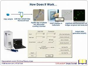 Tutorial  Using Cellometer For Cell Viability Measurements