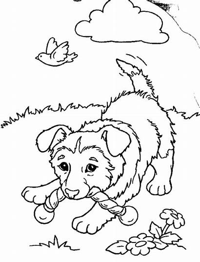 Coloring Pages Puppies Printable
