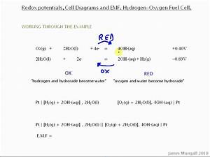 Redox Potentials  Cell Diagrams And Emf  Hydrogen And