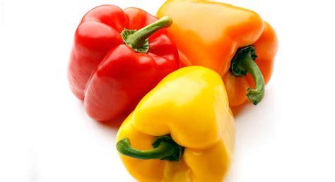 cuisine chou comment bien conserver mes légumes prima