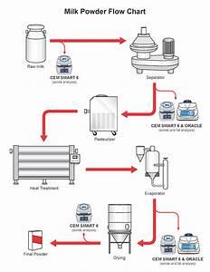 Milk Powder Production Process