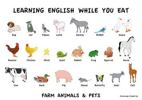 Animal Farm Resumen En Ingles by Animais Em Ingl 202 S Ingl 202 S Ems And Animais