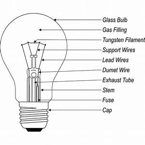 What Are The Different Types Of Light Bulbs