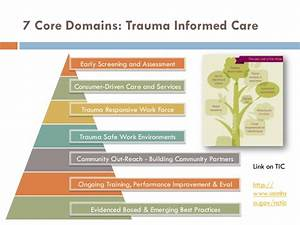 Trauma informed care a national healthcare movement ...