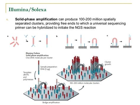 Illumina Next Generation Sequencing by New Generation Sequencing Technologies An Overview