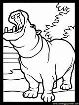 Coloring Hippopotamus Animals Colouring Hippo Yawning Animal Hippos Cartoon Yawn Template Printable Clipart Serengeti Super Atozkidsstuff Drawing Coloringpages101 Sheets Easter sketch template